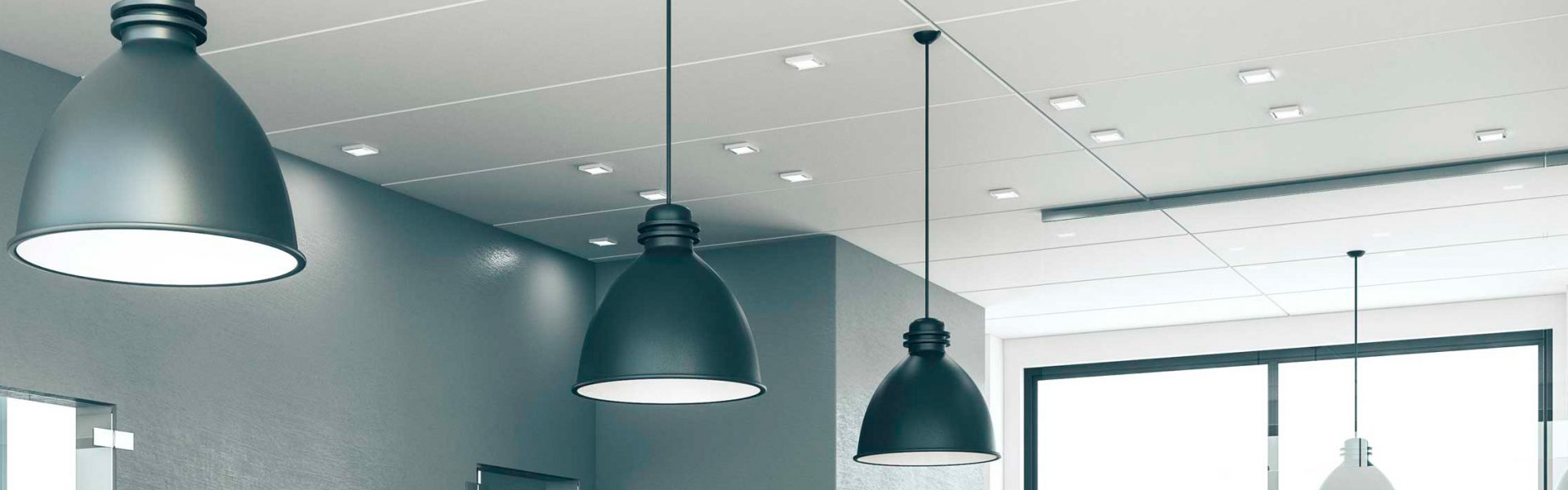 LED Pendant / Downlight